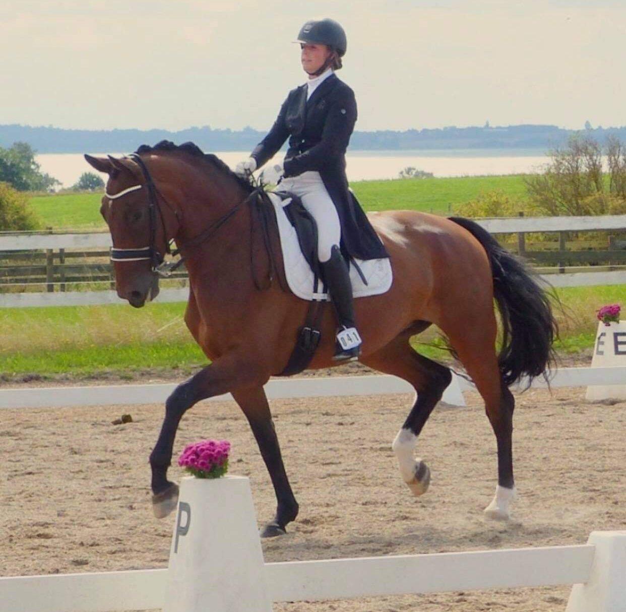 Thomas-Lindegaard-underviser-gek-gentofte-rideklub-800px